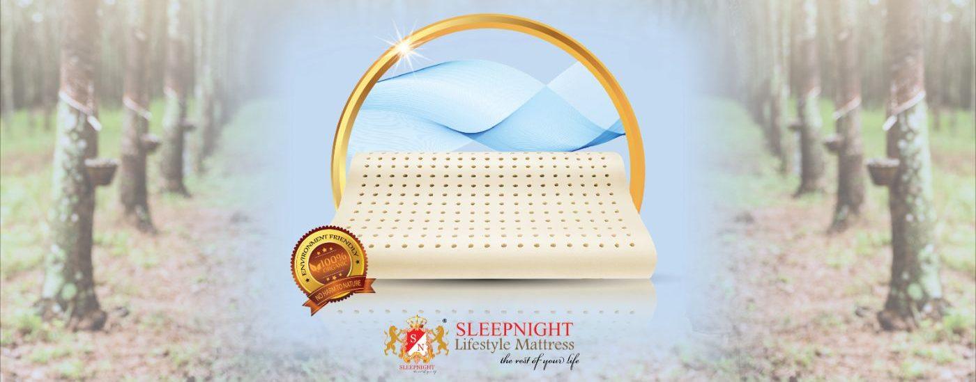 SLEEPNIGHT Organic Latex Pillow