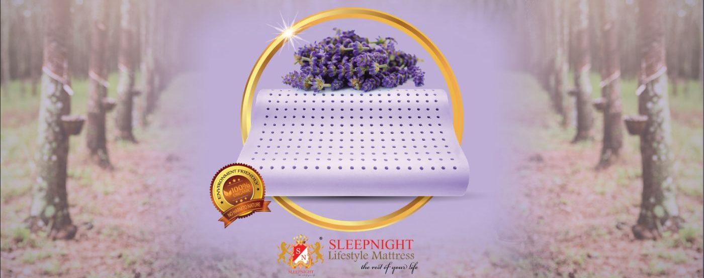 Lavender Latex Pillow