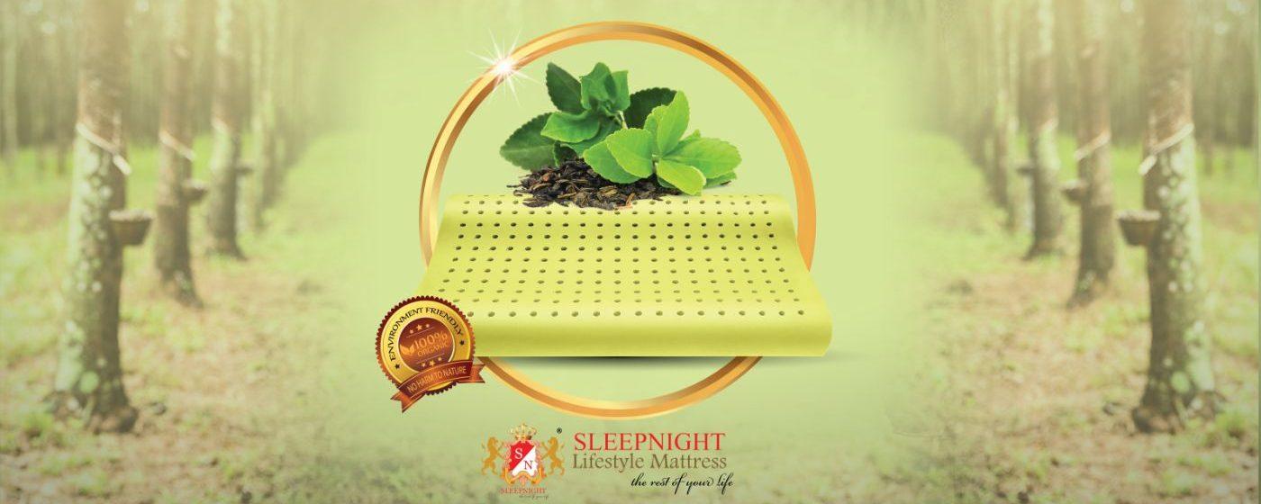 Green Tea Latex Pillow